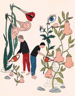 Marion Fayolle -ilustracion sentidos